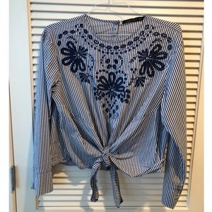Zara multi embroidered top